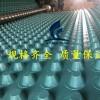 绿色塑料排水板凸片排水板程源厂家发货