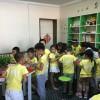 加盟开办一个课后小学辅导班需要多少钱